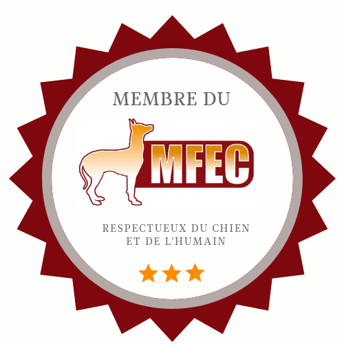 badge mfec.original